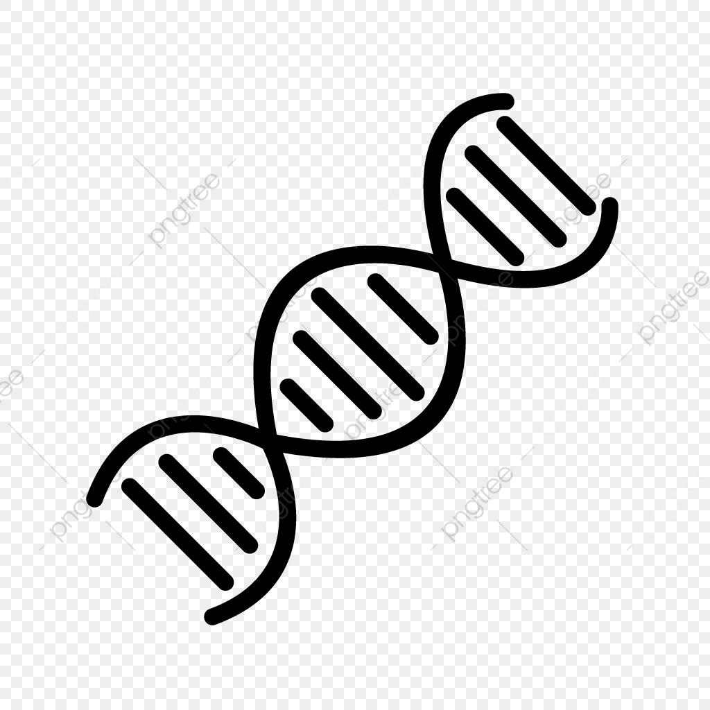 Vector Dna Icon, Dna, Genetics, Helix PNG and Vector with.