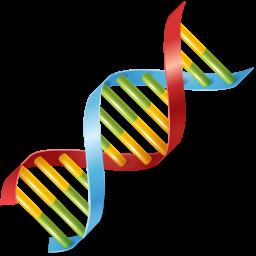 Body DNA Icon.