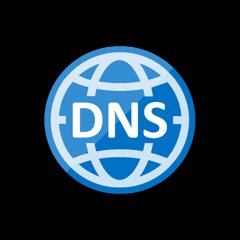 Reverse DNS Servers.
