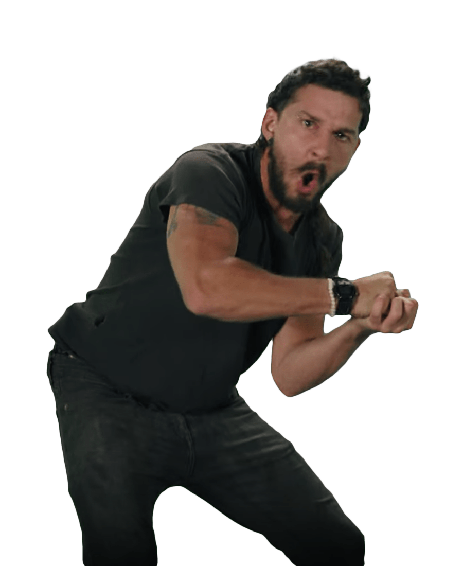Shia LaBeouf Fists transparent PNG.