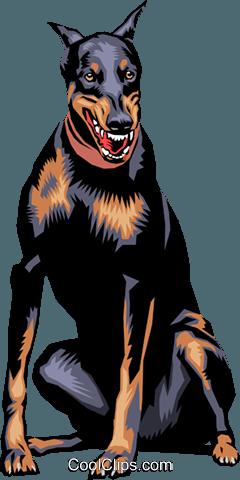 Doberman Pinscher dog Royalty Free Vector Clip Art illustration.