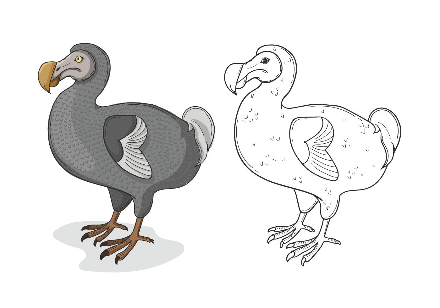 Dodo Bird Free Vector Art.