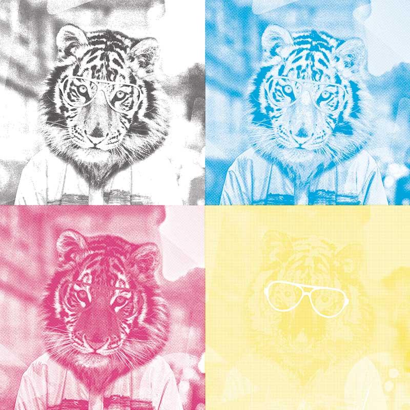Cmyk Color Separation Software Free Download.