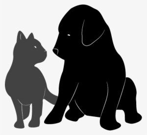 Dog And Cat PNG & Download Transparent Dog And Cat PNG Images for.