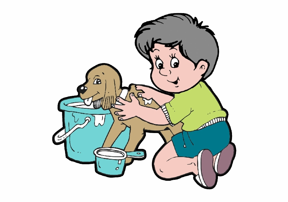 Animal Grooming Animals Homepage.