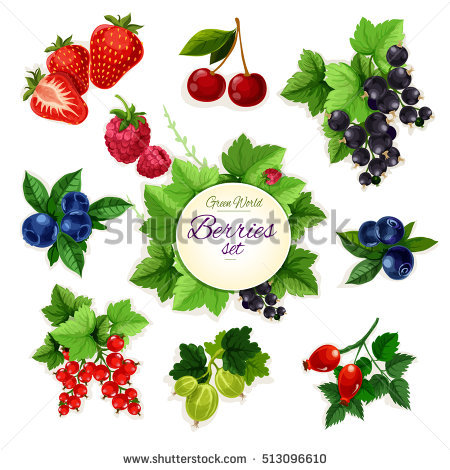Berry Stock Photos, Royalty.