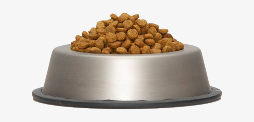 Dog Food Bowl Png.