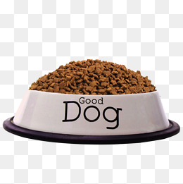 Dog Bowl Png (105+ images in Collection) Page 2.