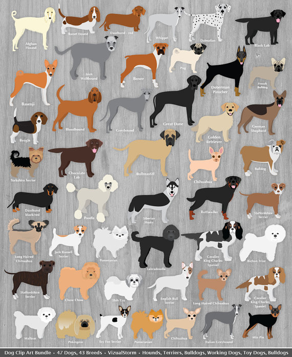 Dog Clip Art Bundle Digital Dog Clipart Animal by VizualStorm.