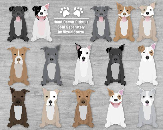 Pin on Pit Bull Designs.