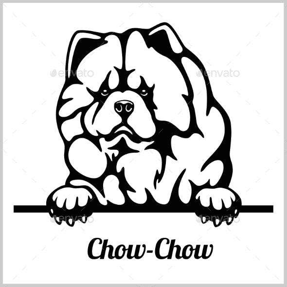 Chow Chow Peeking Dogs.