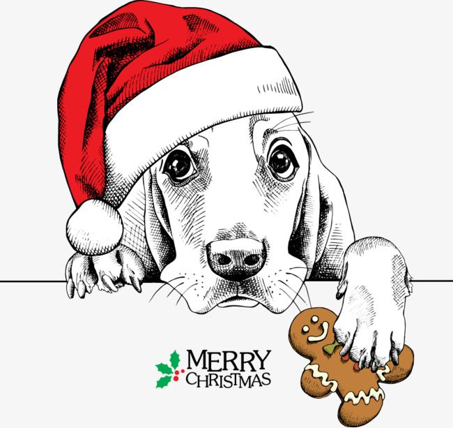 Meng Meng Dog Wearing Christmas Hats Red Dogs, Dog, Clipart.