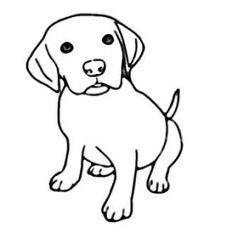 Pet clipart drawn, Pet drawn Transparent FREE for download.