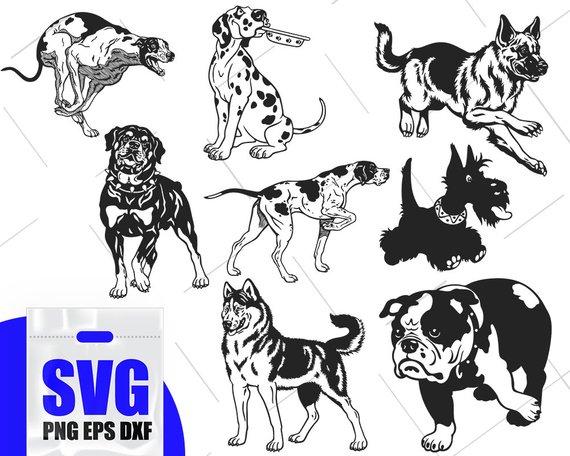 Dog svg files, Dalmatian svg, dog clipart, dog Illustration.