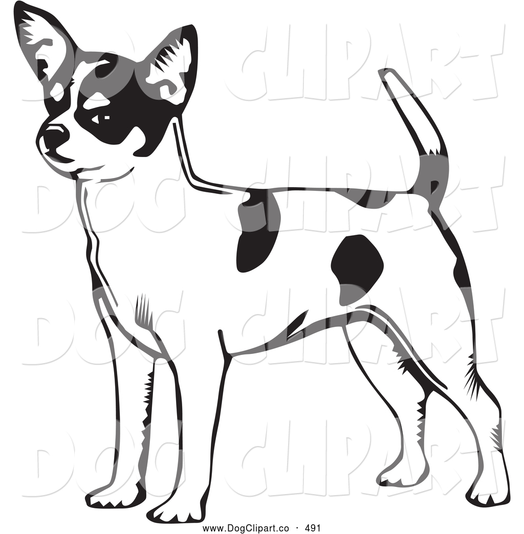 Vector Clip Art of a Cute and Alert Short Haired Chihuahua Dog.