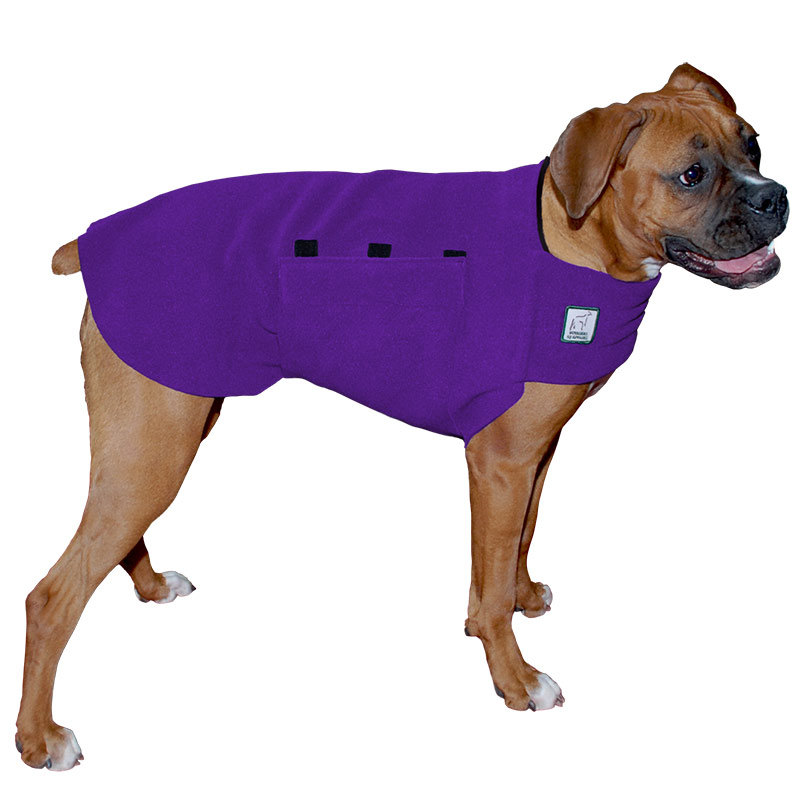 Clipart of medical dog food and dog clothes.