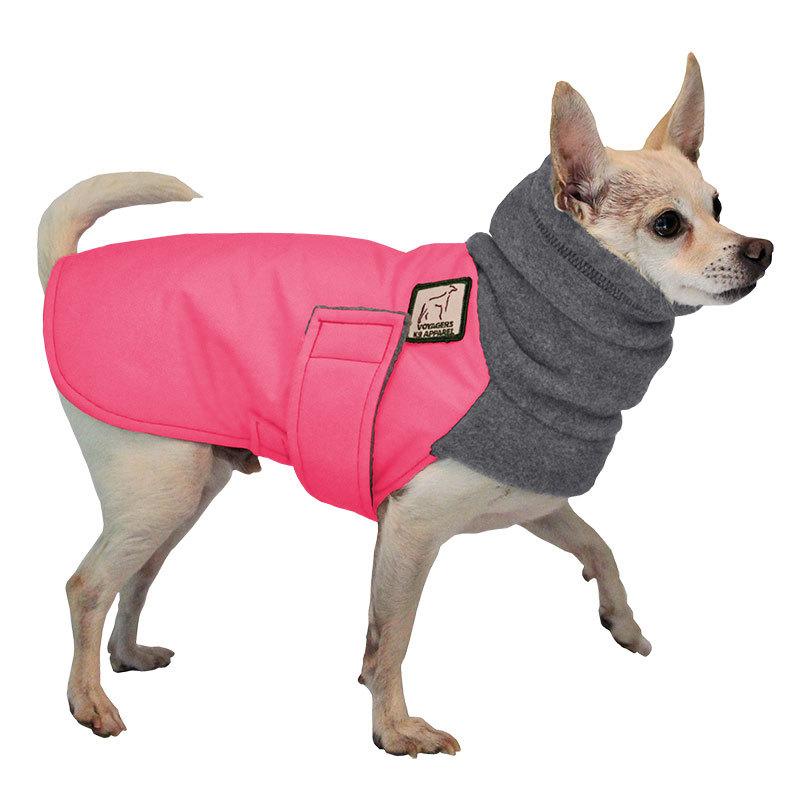 Dog in winter coat clipart.