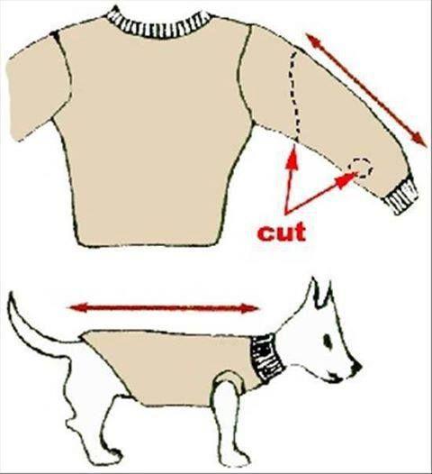 1000+ ideas about Dog Coats on Pinterest.
