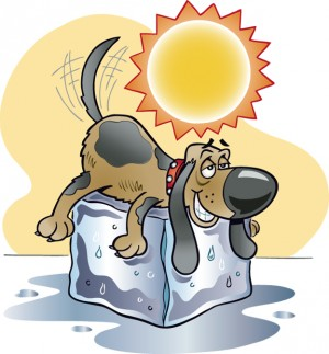 Dog Days Of August Clipart.
