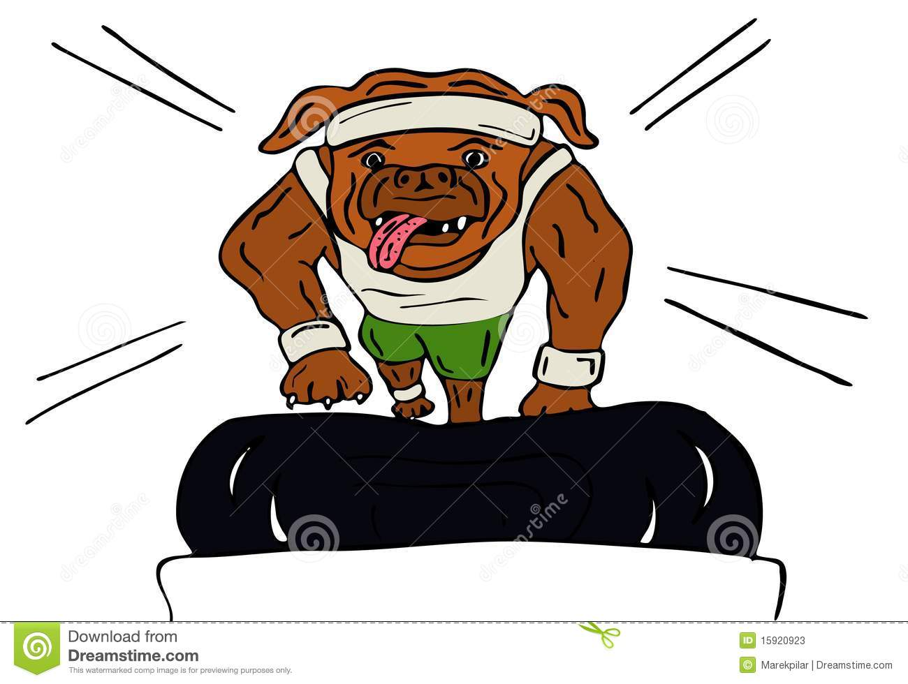 Dog Exercising On Treadmill Stock Photos.