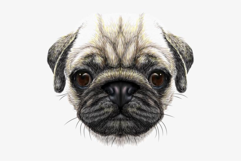 Png Free Library Scarf Vector Dog Bandana.