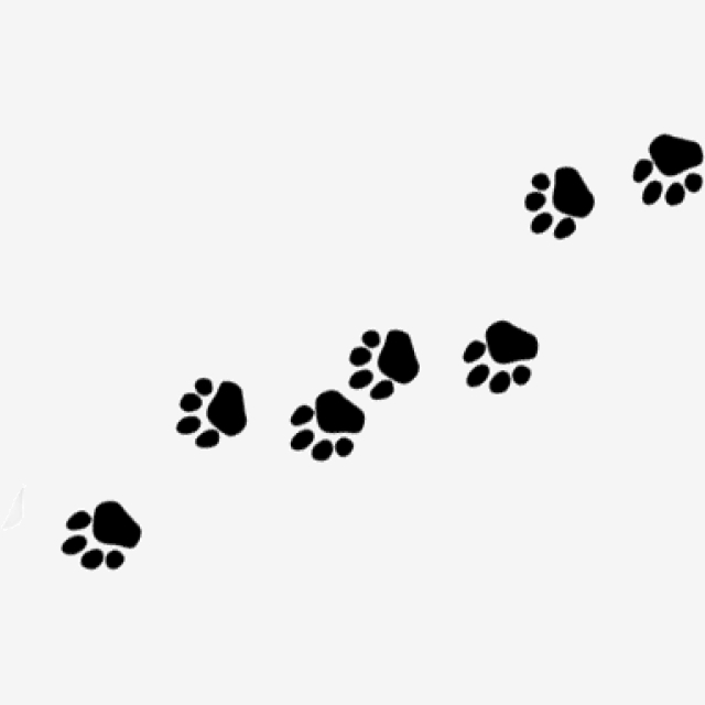 Footprint clipart dog, Footprint dog Transparent FREE for.