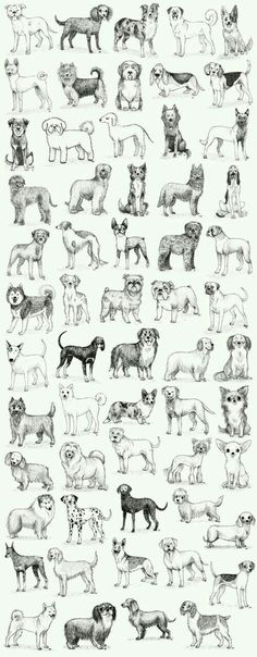 Sitting dogs digital clip art for Personal and Commercial use.