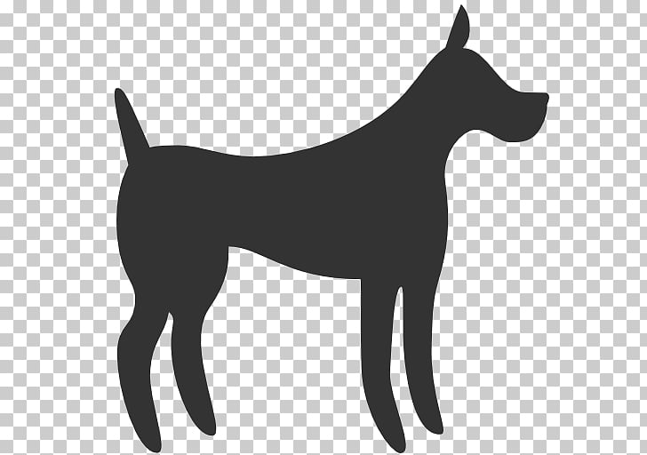 Korean Jindo German Shepherd Puppy Purebred dog Computer.