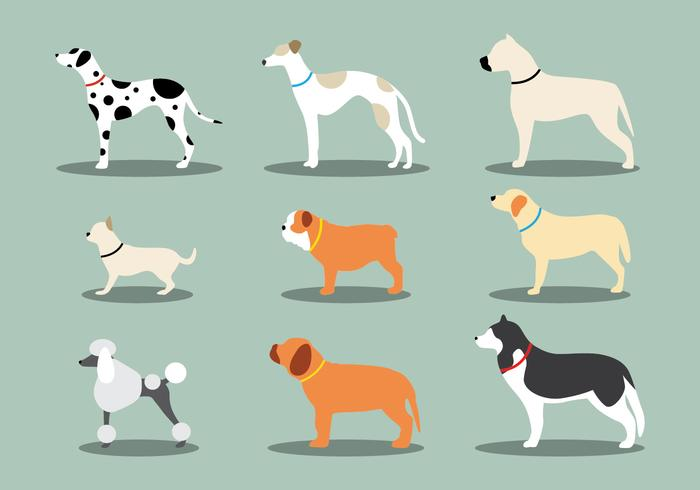 Dog Icon Set.