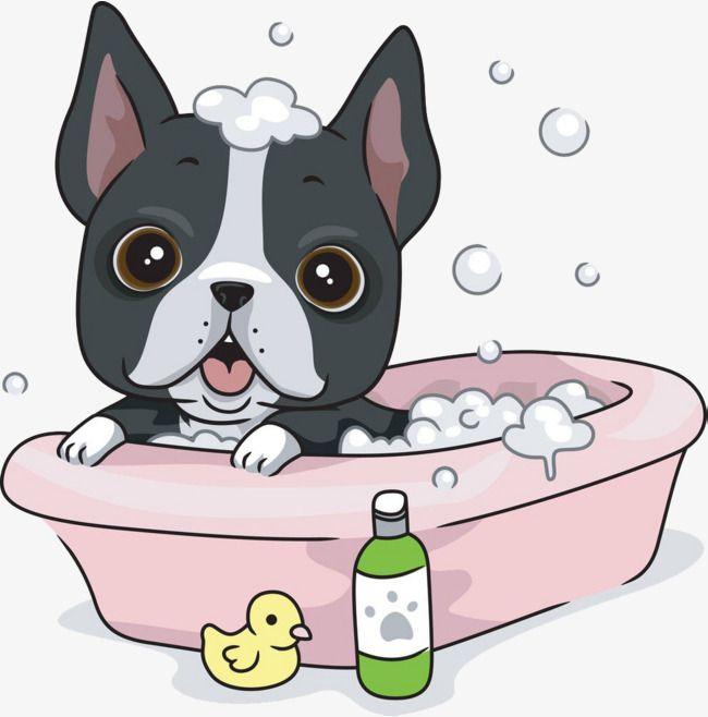 Dogs Take A Bath, Dog, Take A Bath, Bathtub PNG Transparent.