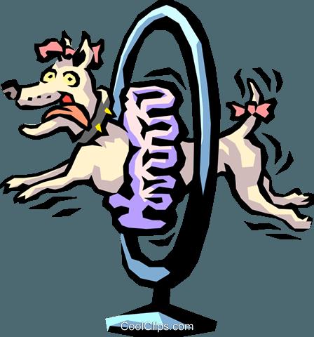 show dog jumping through hoop Royalty Free Vector Clip Art.