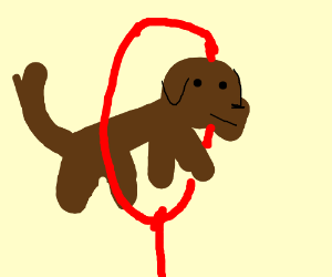 Dog jumping through a hoop.