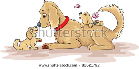 Mother Dog And Puppies Stock Photos, Royalty.