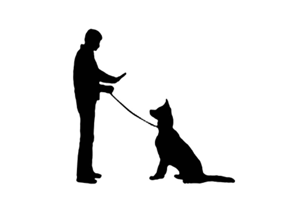 Obedient Dog Clipart.