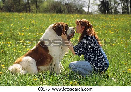 Stock Image of young women and Saint Bernard dog.