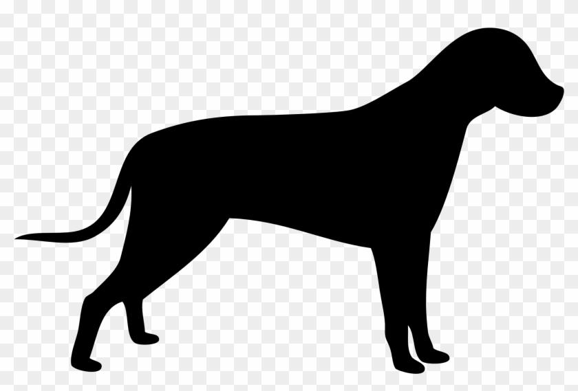 Dog Outline.