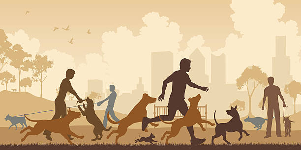 Best Off Leash Dog Park Illustrations, Royalty.