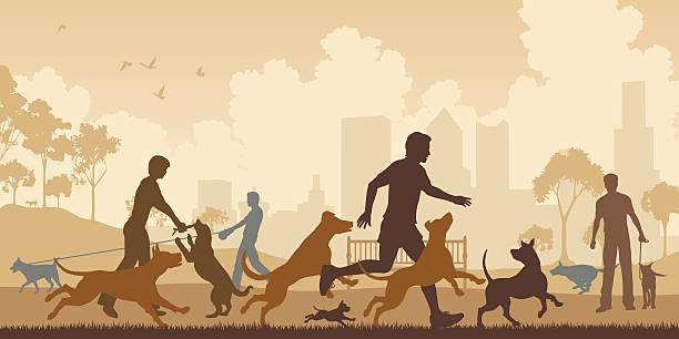 Best Off Leash Dog Park Illustrations, Royalty.