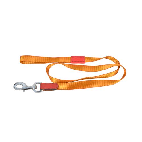 Dog Collar PP, घर के उद्देश्य के लिए.