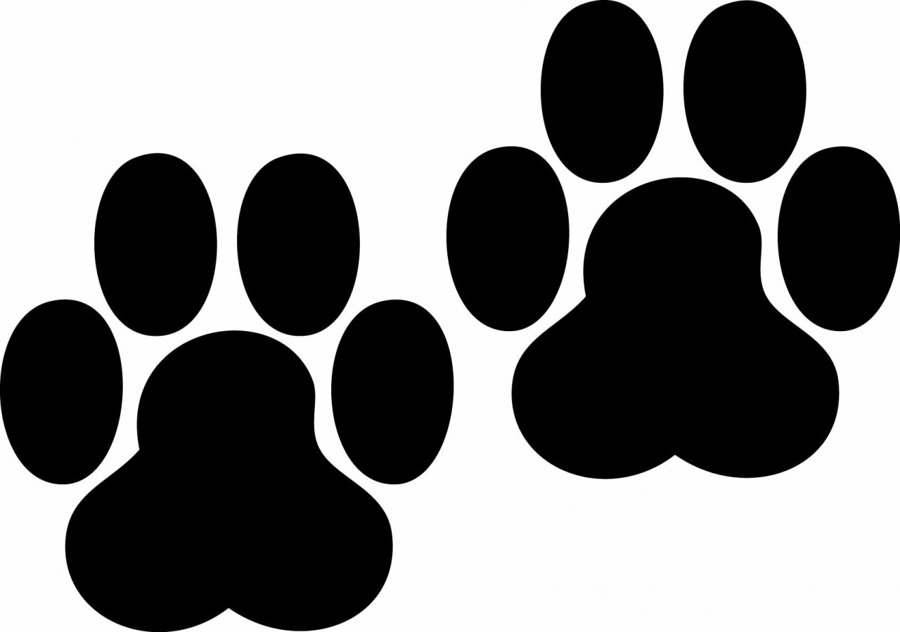 Dog paw print clip art free dog clipart.
