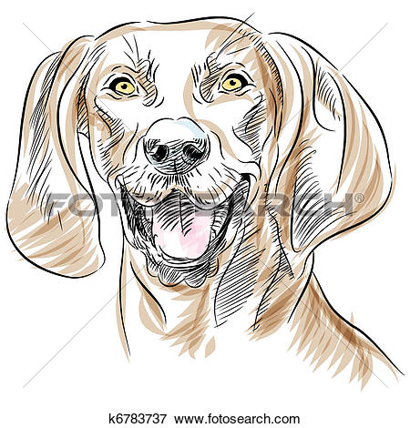 Clip Art of Redbone Coonhound Dog Portrait k6783737.