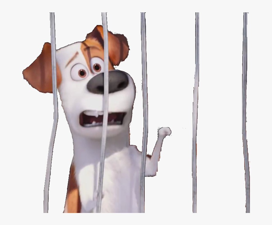 Transparent Dog Cage Png.