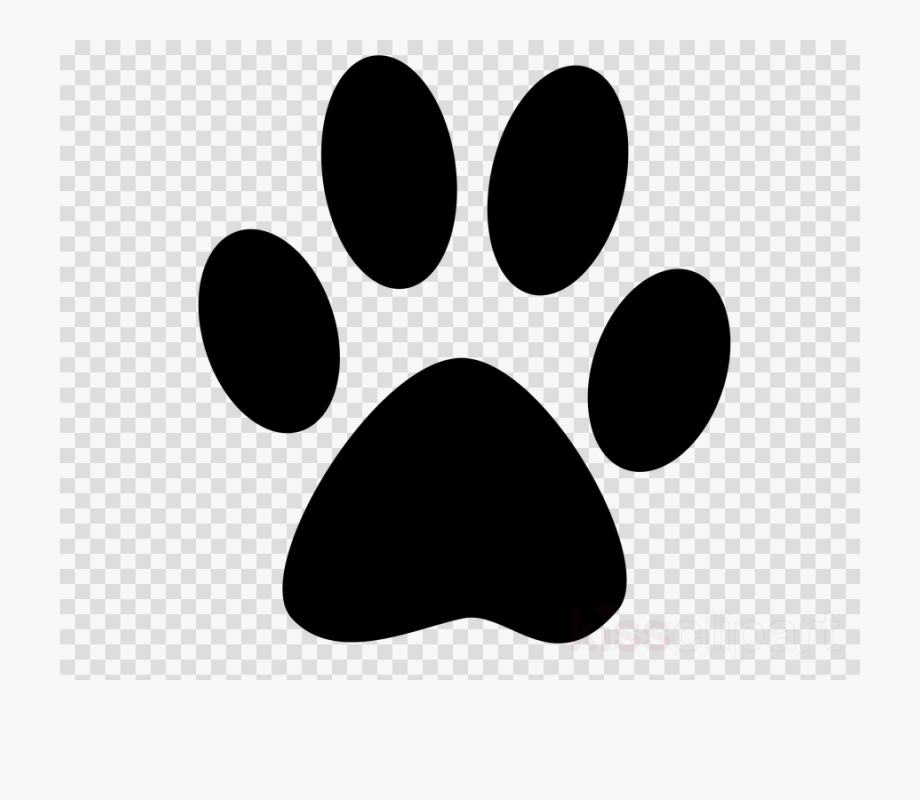 Lion, Dog, Cat, Transparent Png Image & Clipart Free.