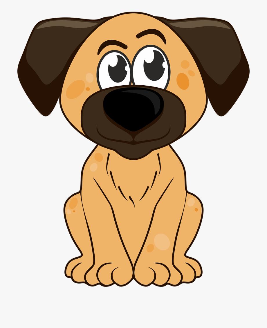 Dog Puppy Doggie.