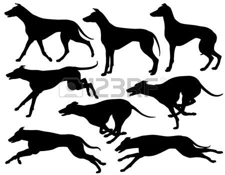197 Dog Racing Stock Illustrations, Cliparts And Royalty Free Dog.
