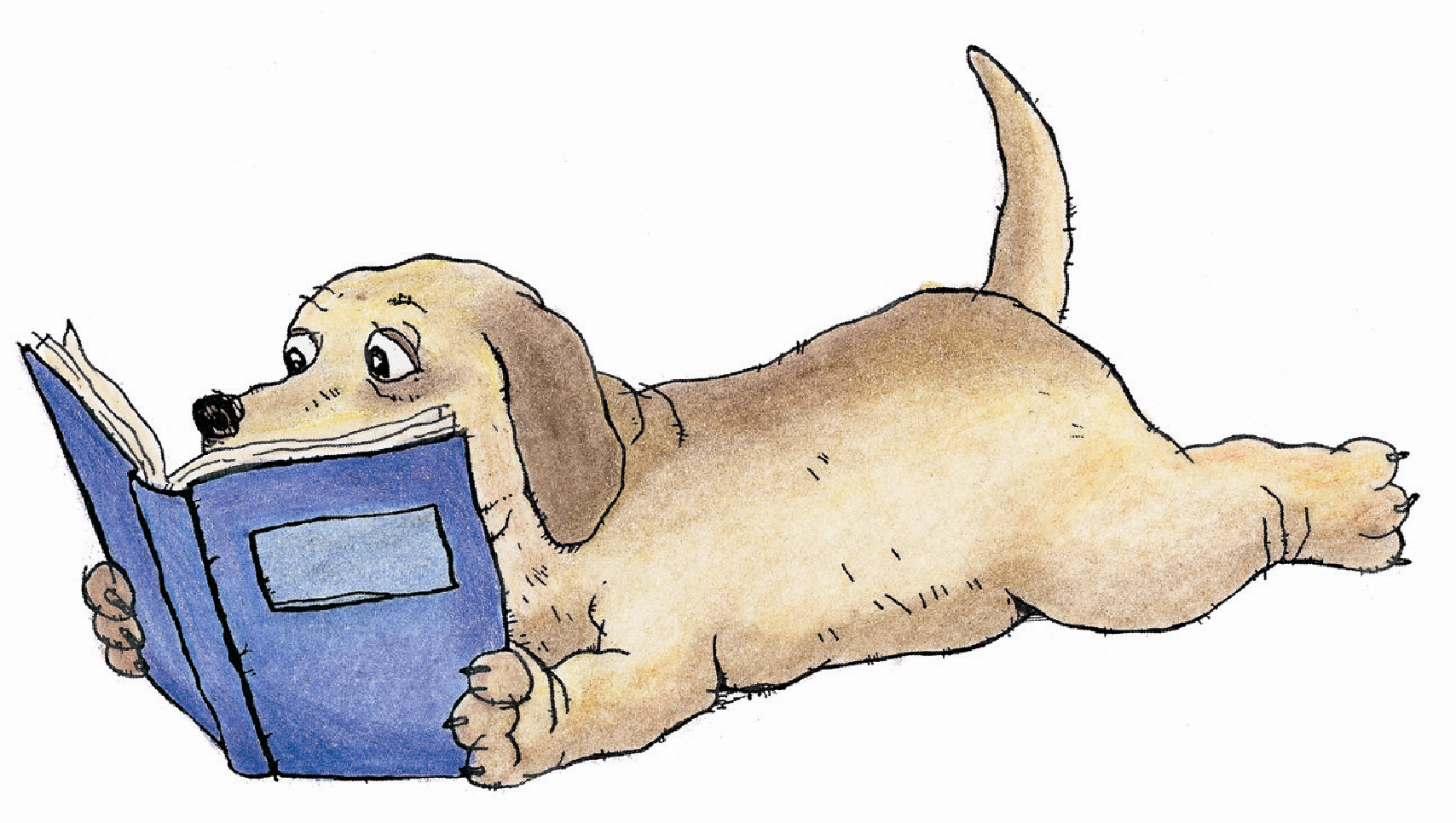 Dog Reading A Book Clipart.