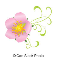 Wild rose Illustrations and Stock Art. 2,243 Wild rose.