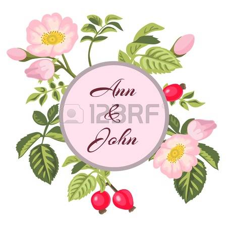0 Dogrose Rose Stock Vector Illustration And Royalty Free Dogrose.