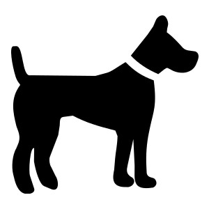 1061 Dog And Cat free clipart.