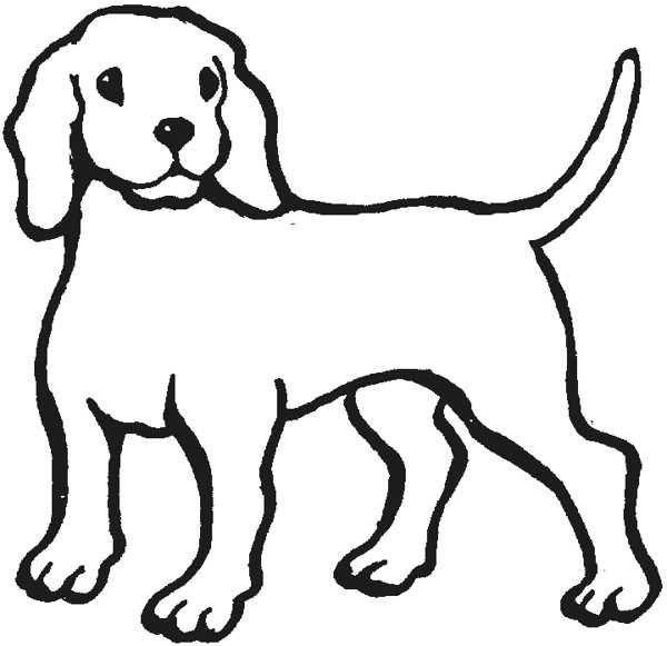 Outline Of A Dog.